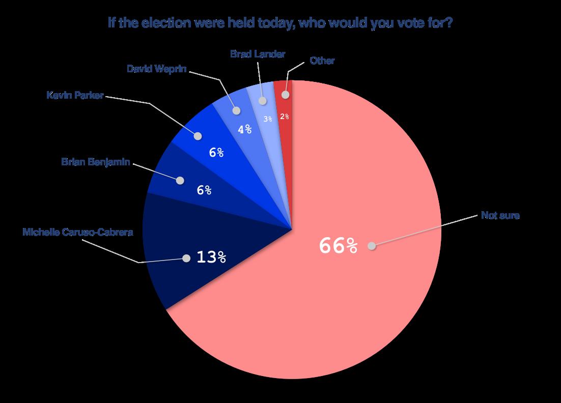 Schoen Cooperman Research Poll