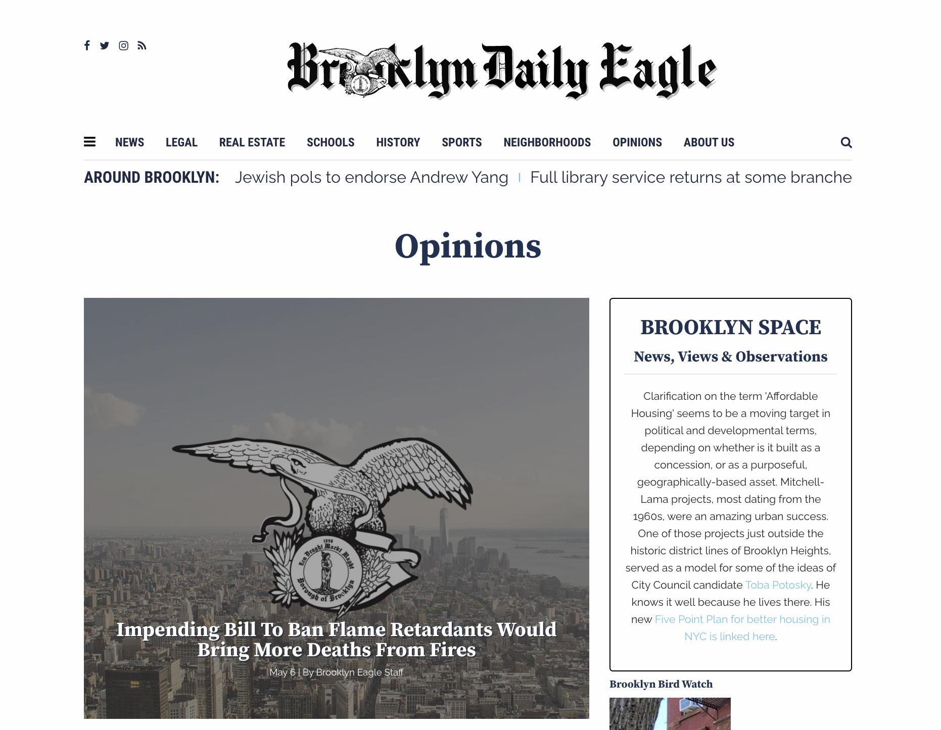 Screenshot of the deleted Brooklyn Eagle story.
