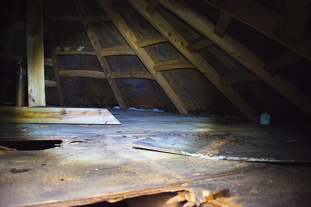 The view inside the neglected drinking water tank Jonathan Lewin cleaned. The crawl space between the cone-shaped roof and flat cover showed signs of decay and animal activity.