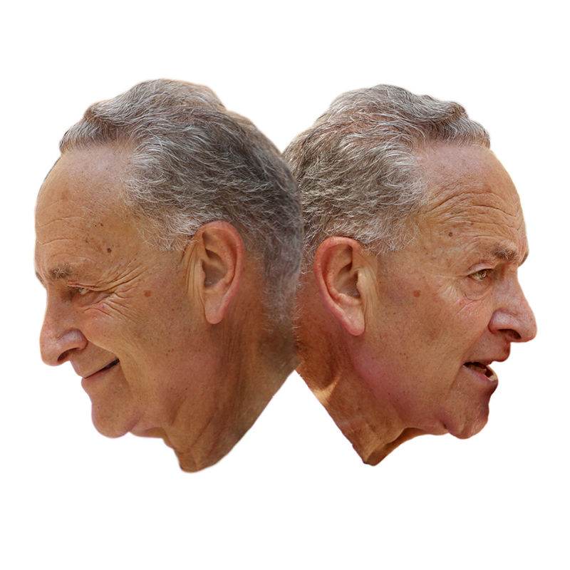 Chuck Schumer facing in opposite direction