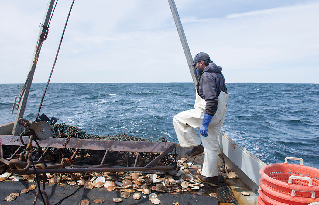 Scallop fisherman Chris Scola on a boat in the ocean