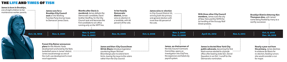 Letitia James professional timeline