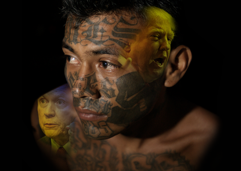 MS-13 cover